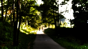 A la oscuridad_01