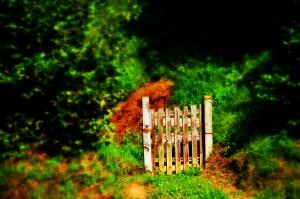 Puerta para nada 0_01