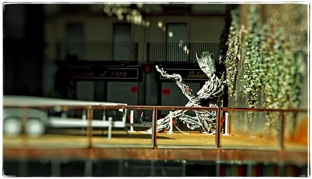 hombre-arbol-1-ene-2017-fuji